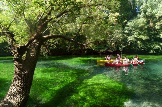 Canoe Provence + canoe Ventoux + canoe Luberon